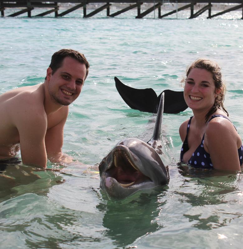 delfin_schwimmen_usa_florida_03